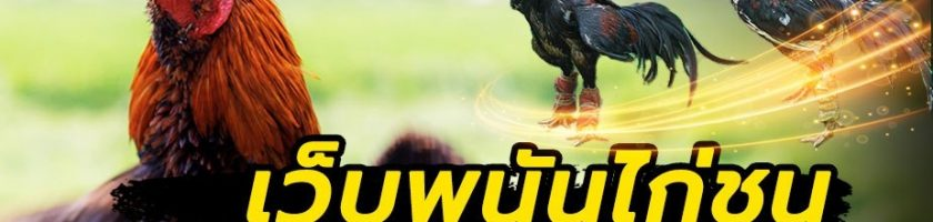 เว็บพนันชนไก่cockfight